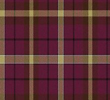 02813 York County, South Carolina E-fficial Fashion Tartan Fabric Print Iphone Case by Detnecs2013