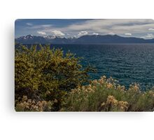 The Wild - Lake Tahoe Canvas Print