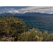 The Wild - Lake Tahoe Photographic Print