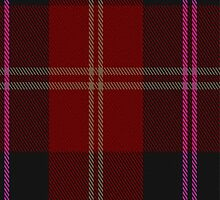 02820 Eglington Fashion Tartan Fabric Print Iphone Case by Detnecs2013