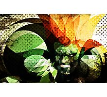 Blanka 2 Photographic Print