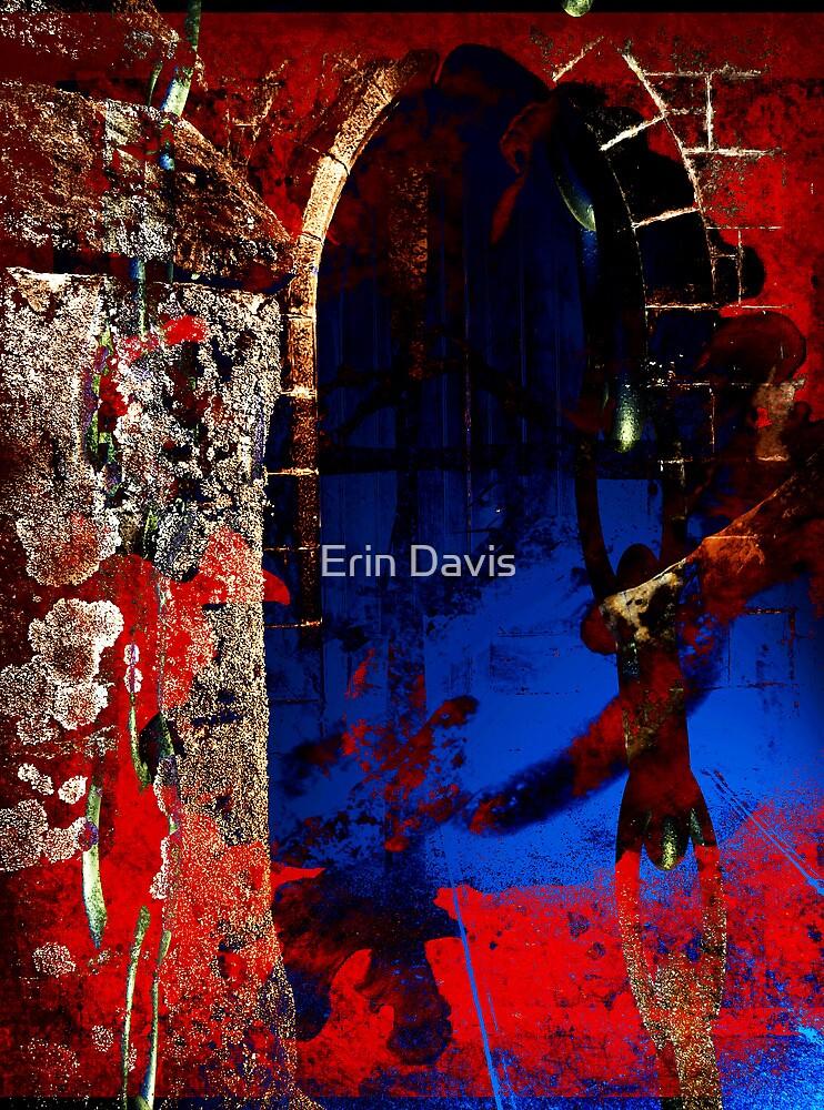 Behind Closed Doors No. 1 ... by Erin Davis