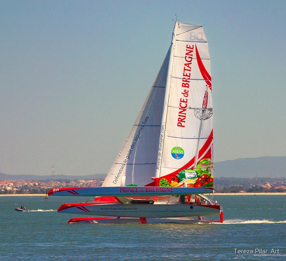 Prince de Bretagne. La Route des Princes. regatta. by terezadelpilar~ art & architecture