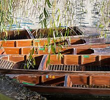 Punts by Gary Wilkinson