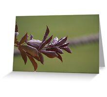 Purple Rain Pt.1 Greeting Card
