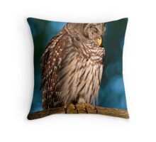 Drowsy Barred Owl at Sunrise Throw Pillow