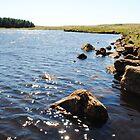 Binevenagh Lake in the sun by Sarah Cowan