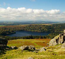 Burrator reservoir from Sheepstor, Dartmoor by Revd Andy Barton