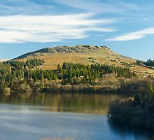 Sheepstor and Burrator Reservoir by Revd Andy Barton