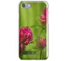 Simple beauty of red clover iPhone Case/Skin