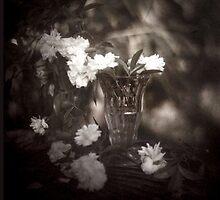 Vintage Roses by korinneleigh