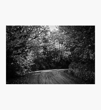 An autumn landscape - BW Photographic Print
