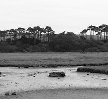 Budleigh Salterton (1) by CliveSluter