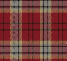 02827 Lafayette Parish, Louisiana E-fficial Fashion Tartan Fabric Print Iphone Case by Detnecs2013
