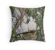 'JUST POSING!' Little Corella's, Mannum, Sth. Australia. Throw Pillow