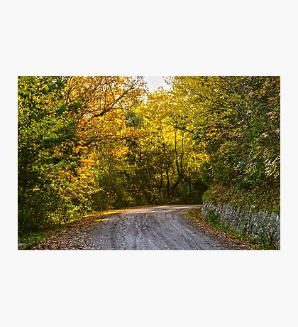 An Autumn landscape  Photographic Print