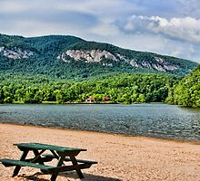 PICNIC TABLE by vincentphoto