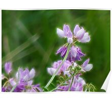 Crown Vetch in Fractalius Poster