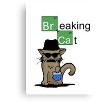 Breaking Cat  Canvas Print