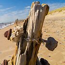 Distressed groyne at spurn point. by naranzaria