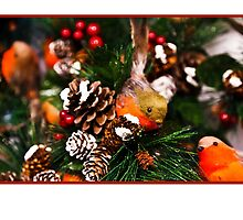 Christmas card with bird and decorations by Cheryl Hall