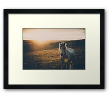 'Star' Framed Print