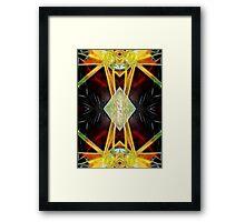 IX - The Hermit Framed Print