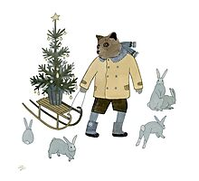 Bear, Christmas Tree and Bunnies Photographic Print
