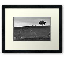 Lines in Ash Framed Print