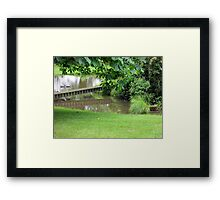our pond on a dull day Framed Print