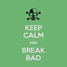 Break Bad by Jim Princivalle