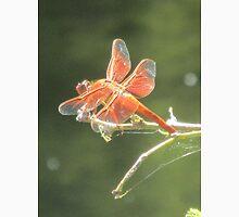 Flame Skimmer Dragonfly Unisex T-Shirt