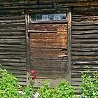 Rustic Door by Lotus0104