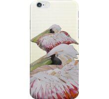 resting pelican iPhone Case/Skin