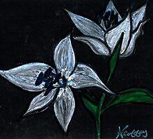 TWO FLOWERS  by NEIL STUART COFFEY