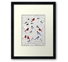 Winter Birds Framed Print