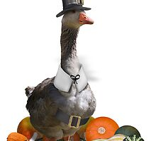 Thanksgiving Pilgrim Boy - Goose  by Gravityx9