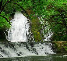 Green Peak Falls, Oregon by DArthurBrown
