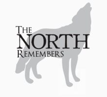 The North Remembers by amy kephart