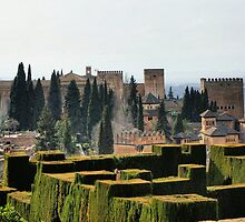 The Alhambra palace in Spain by vribeiro