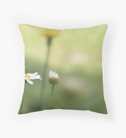But a dream within a dream... Throw Pillow