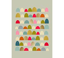 Delightful Rue Photographic Print
