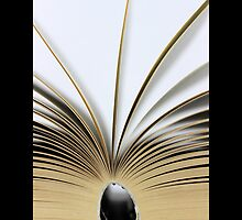 Open Book by © Sophie W. Smith