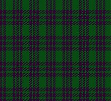 02844 Elphinstone Clan/Family Tartan Fabric Print Iphone Case by Detnecs2013