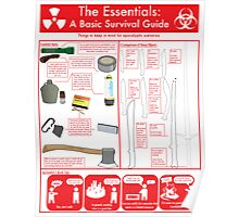 The Essentials: A Basic Survival Guide Poster
