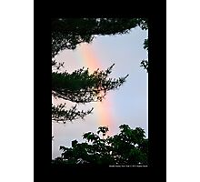 Forest Rainbow - Middle Island, New York  Photographic Print