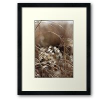 Pure Morning Framed Print