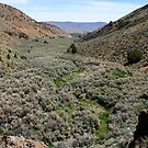 Canyon....outside Reno Nevada USA by Anthony & Nancy  Leake