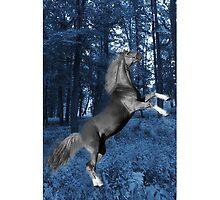 ☝ ☞ BLUE WONDER HORSE IPHONE CASE☝ ☞ by ✿✿ Bonita ✿✿ ђєℓℓσ