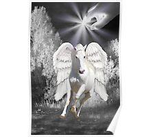 Ƹ̴Ӂ̴ƷANGELIC HORSE PICTURE/CARDƸ̴Ӂ̴Ʒ Poster